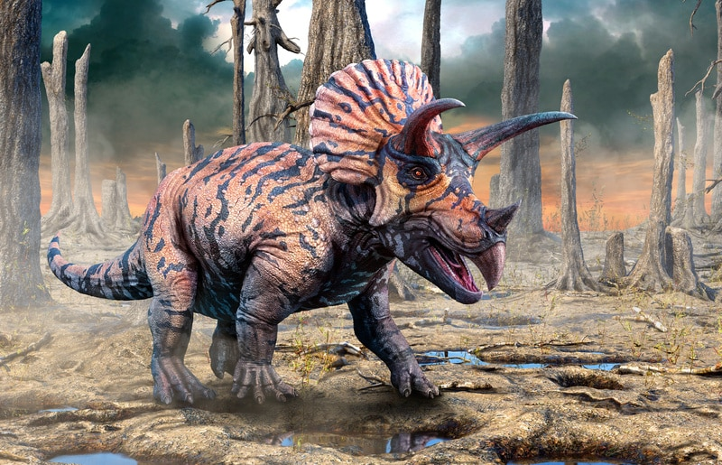 Do Dinosaurs Have Common Names?